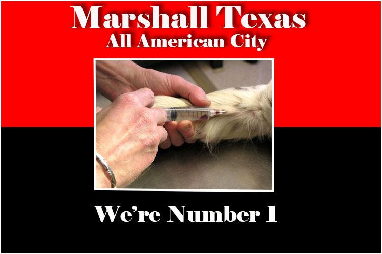 marshallFlag180730